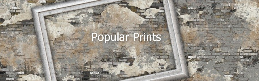 Popular Framed Prints From The Go Too Supplier Of Framed Prints